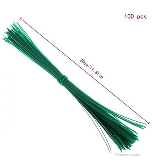 100 Pcs Jardin Coated Twist Fil Tie Ficelle Usine Support En Plastique Sangle-câbles M20 Liens végétaux Color : 30cm