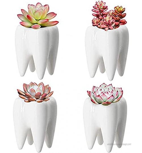 Cingc 1 pièces Dents en céramique Pot de Fleur Plante succulente Pot Support conteneur pour Bureau Bureau décor