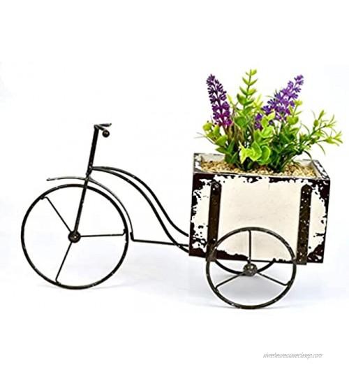 gongxi Vélo Fleur Pots De Plantes Vintage Fer Art Mini Vélo Planteur Conteneur De Fleurs Vase Décoration De Bureau pour Plantes Succulentes Cactus Air Plante