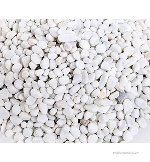 Ksnnrsng Gravier Décoratif Blanc de Pierres Décoratives pour Vases Cailloux Décoratifs Environ Gravier Blanc pour Pots de Fleurs Plantes Jardinières Bols Aquarium Décors Blanc 1 kg