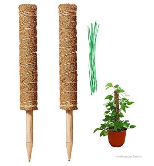 HH-LIFE 2 pièces perches totem en fibre de coco avec 10 attaches torsadées support pour plantes grimpantes en fibre de coco Piquets en fibre de coco pour plantes grimpantes 43cm